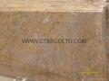 Madura Gold granite countertop 2