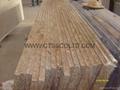 Madura Gold granite countertop 5