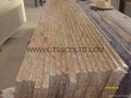 Granite Countertops kitchen worktop 3