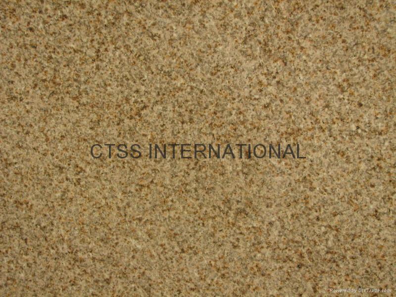 Yellow Granite Stone : Yellow beige gold color granite slab tile paving stone
