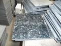 Granite countertop kitchen worktop vanity wall floor paving stone medallion tile 3