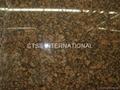 Granite Tan Brown Tropical Brown Baltic