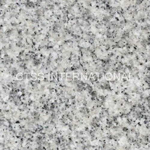 Silver Grey GW1502