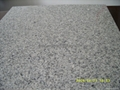 Grey Granite floor tile 60x60cm