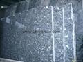 Blue Pearl GT grade Granite tiles 60x60x2cm  4