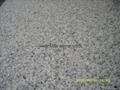 Silver Grey granite tiles 305x305x10mm  2