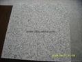 Silver Grey granite tiles 305x305x10mm  5