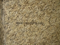 New Venetian Gold granite slabs 3cm