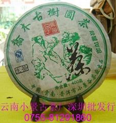 喬木古樹圓茶
