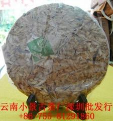 芽苞茶芽(千年古樹)