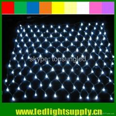 led christmas light net light 2x2m