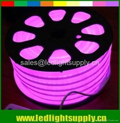 110v 220v color jacket flexible led strip neon light purple