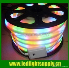 RGBY LED neon flex rope light