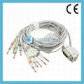 Siemens 10 lead ECG cable