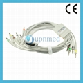 Fukuda Denshi one-piece 10-Lead EKG cable with leadwires  2