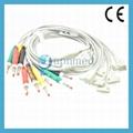 Philips TC30 ,TC60 ecg 10 lead wires