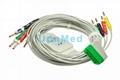 BJ-900P Nihon Kohden 10 lead ECG cable