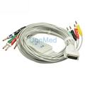 Burdick  one piece 10 lead EKG cable
