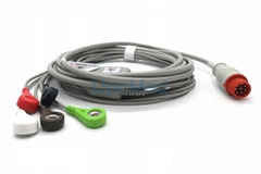 Bionet BM3 ECG Cable with leadwires,8 pins