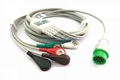 Infinium OMNI Cable with lead wires, 12