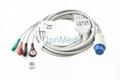 Datex Ohmeda Cardiocap 5 ECG Cable, 10pins