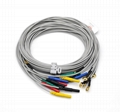Cup EEG Electrodes Cord