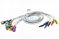 Holter 10 lead ECG lead wires set