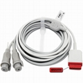 GE IBP cable to dual BD Blood pressure transducer