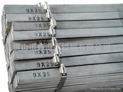 国标304/8镍不锈钢扁钢