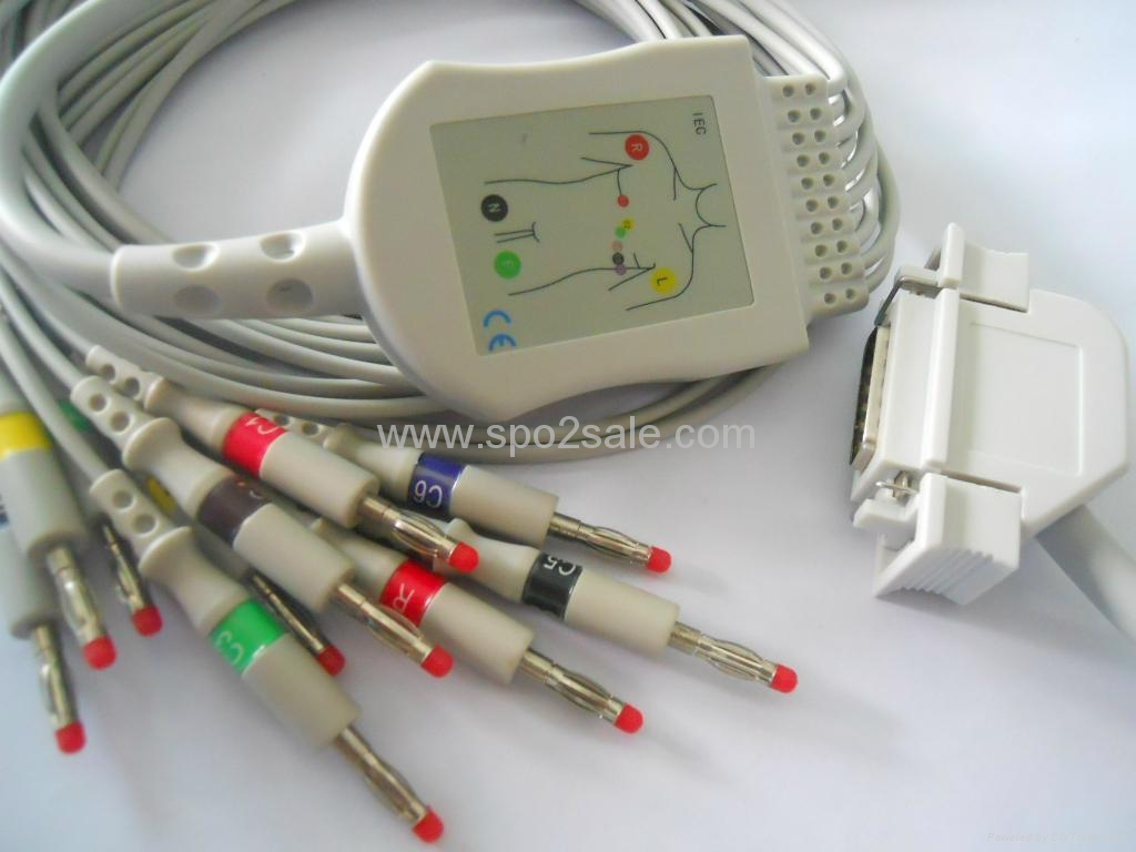 Siemens/Hellige 10-lead ekg cable with leadwires  1