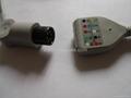Datascope Din type 5 lead ECG Trunk