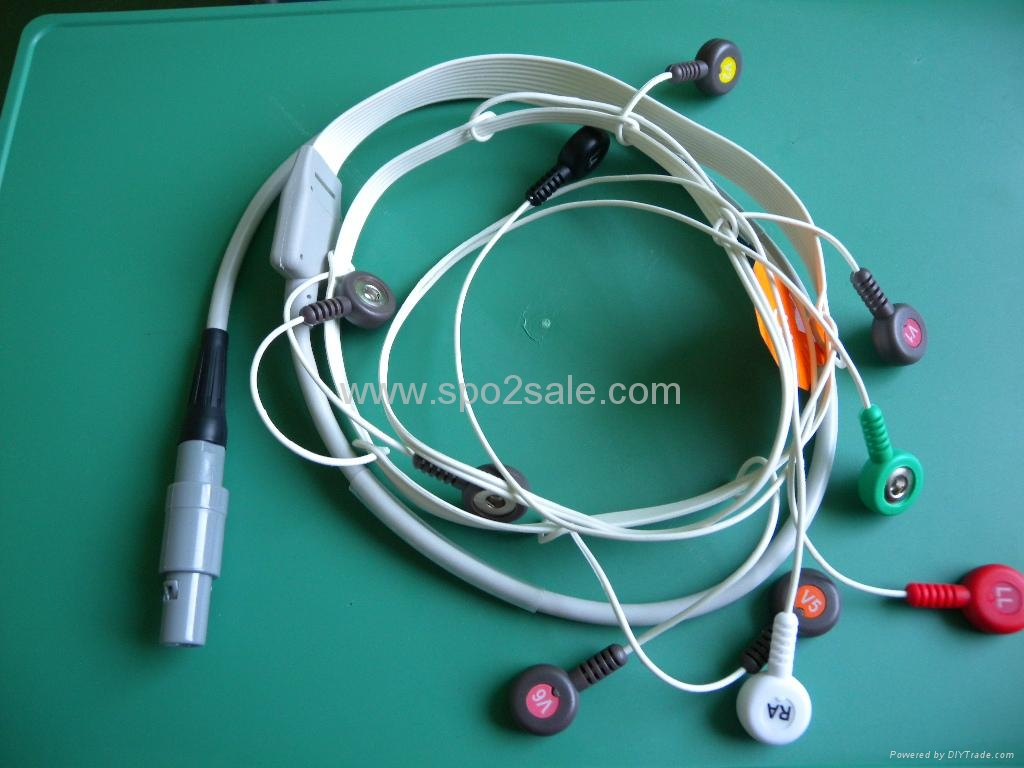 Biomedical instruments(BI) 9800 10 lead holter cable 1