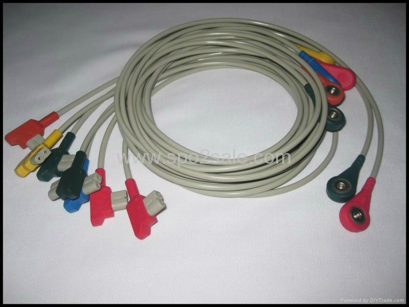 GE 10-lead Snap leadwires  1