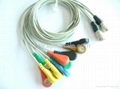 PI Holter cable