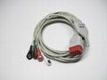 Compatible Bionet BM5 one piece 5 leadwires