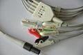 Welch Allyn propaq LT ECG Cable