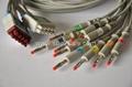 馬葵 Multi-Link 導聯線