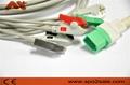 Datascope Passport V, V12 and V21 ECG Cable