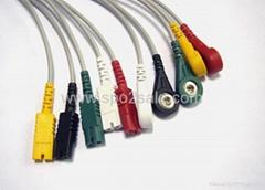 LL型扣式五導聯線