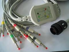 鈴謙PC-104一體心電圖機導聯線