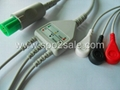 Hellige one piece fixed ECG cable with leadwires