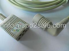 科林BP88主電纜