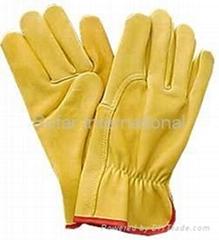 Driving Glove/ Sailing Glove/ Sports Glove/ Shooting Glove