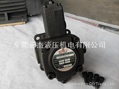 VPE-F30-D-10厂家直销台湾弋力液压油泵