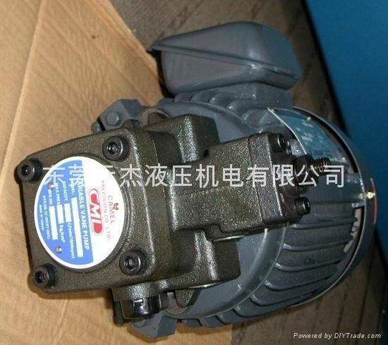 SMVP-20-3-1直接式电机附定量变量叶片泵组合