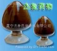 昆明山海棠浸膏粉 1