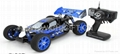 rh802 1:8 4WD Nitro Powered Ready To Run Buggy