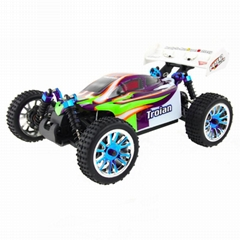 94185pro 1/16 SCALE BRUSHLESS POWER OFF-ROAD BUGGY