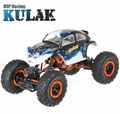 1:16th Sacle Electric RC Off-Road Rock