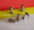 南京固瑞专业生产铜铆钉